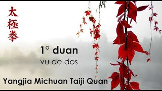 1° duan du Yangjia Michuan Taiji Quan vu de dos