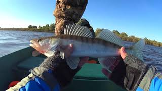 Рыбалка на Волжских раскатах (Главный банк)