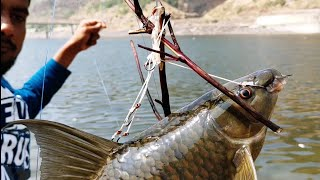 I Never seen Fishing Fishing in srisailam reservoir Fishing near Dam