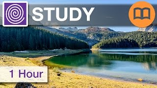 Improve brain activity and relaxation. 1 Hour 10 Minutes of beautiful study music!