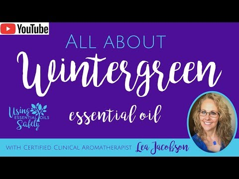 all-about-wintergreen-essential-oil