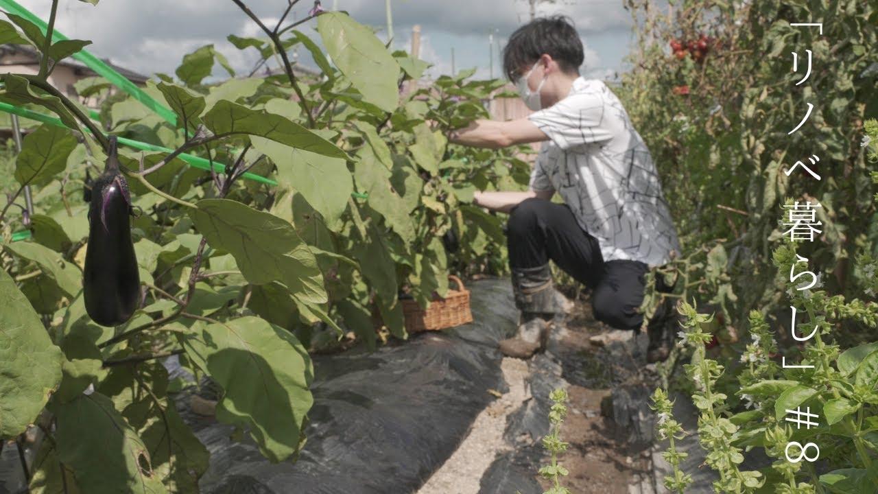 畑のバジルでジェノベーゼ作り|夏野菜|僕のリノベ暮らし8話
