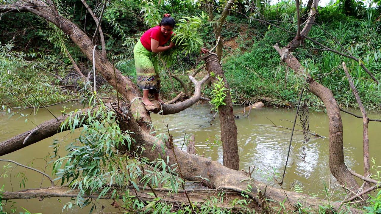 Woman Her monkey is dead - woman Yellow monkey deaded put in land - Survival Skill