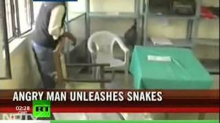 Hartmann: Crazy Alert! The 99-snakes movement