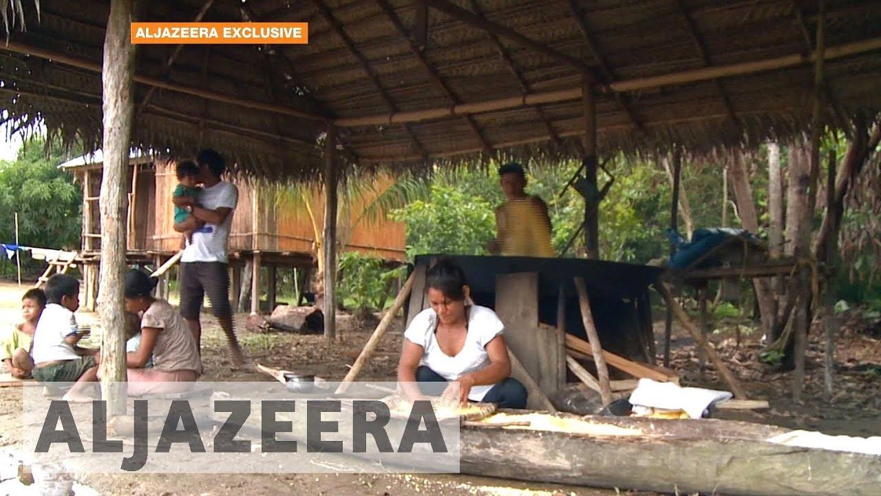 Brazil's Amazon tribes in danger of extinction