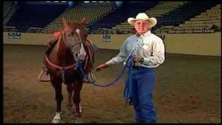 Horse Training Principles, provided by eXtension thumbnail