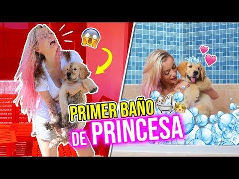 PRIMER BAÑO DE PRINCESA! 🐶👑   COMO BAÑAR A TU MASCOTA   Katie Angel