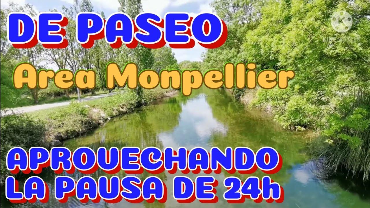 Área MONPELLIER +Paseo #85