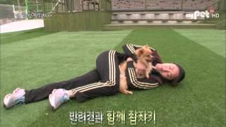 [마이펫티비] 강아지랑 자는 건 나쁜 습관