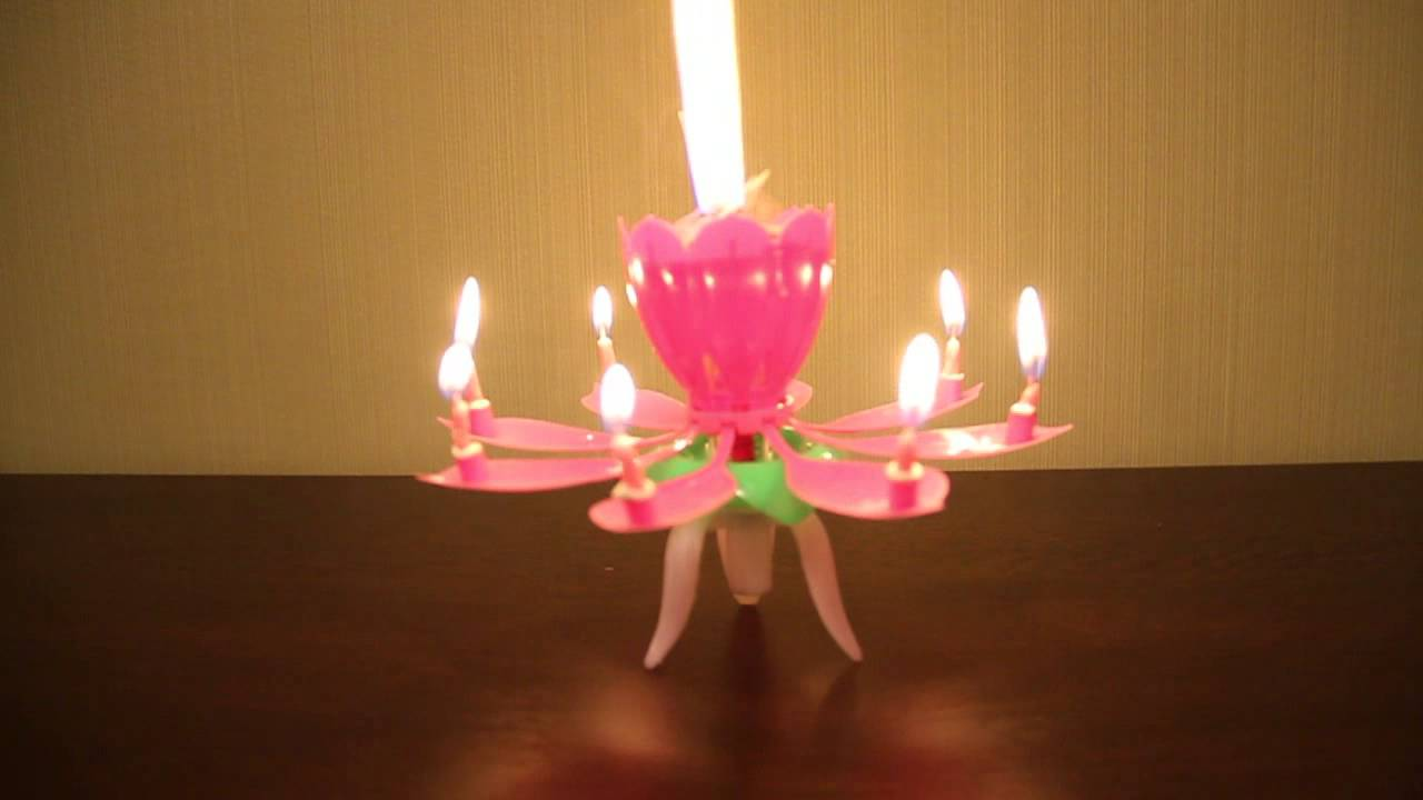 Lotus Shaped Birthday Candle