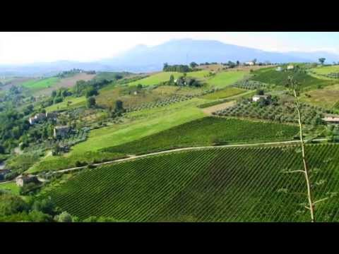 Emilia-Romagna & Marche Food & Wine Tour of Italy