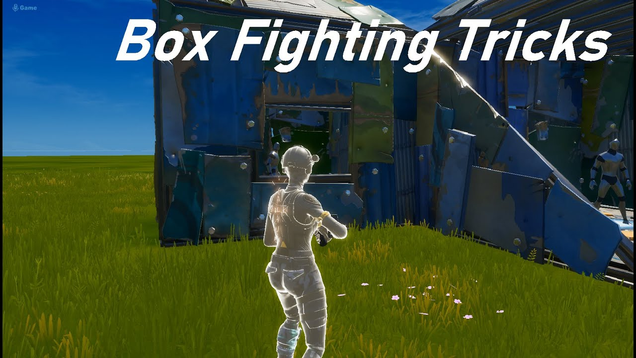 How To Win Every Fight / Box Fight