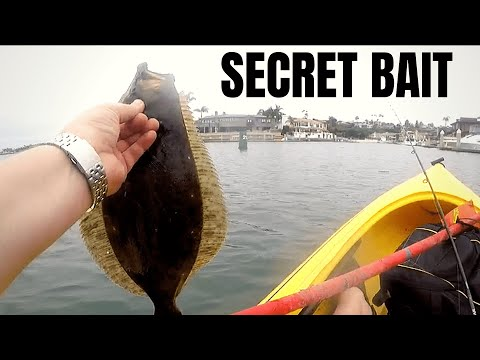 The SECRET BAIT For HALIBUT Fishing