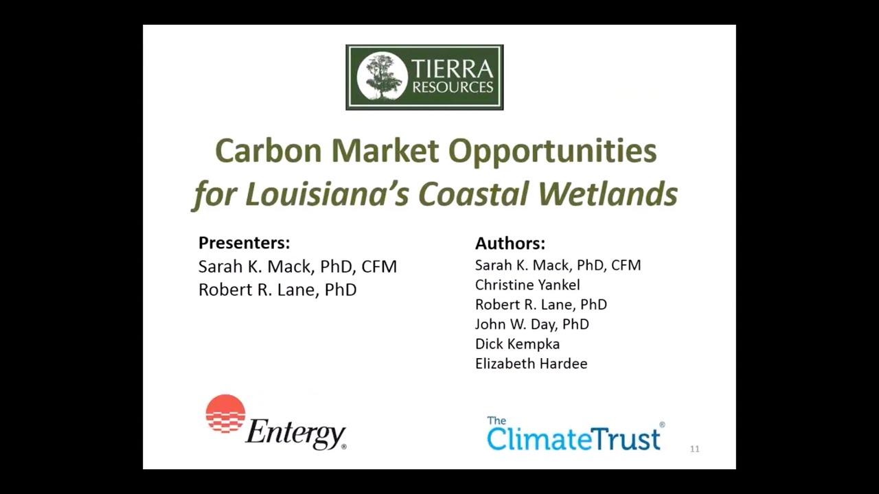 acr webinar carbon market opportunities for louisiana s coastal wetlands [ 1366 x 768 Pixel ]