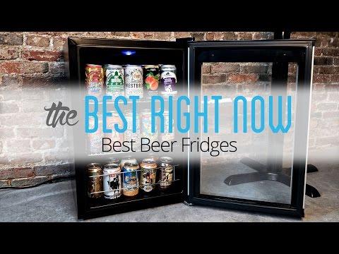 The Best Beer Fridges: Wine Enthusiast Evolution Series & Igloo 3.2-Cu.-Ft. Fridge