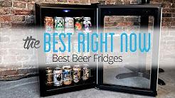 Les meilleurs réfrigérateurs à bière: Wine Enthusiast Evolution Series et Igloo 3.2-Cu.-Ft. Frigo