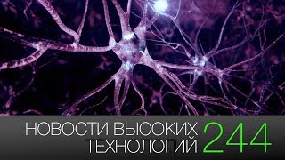 Новости высоких технологий #244: первая пересадка памяти и самый далекий кислород