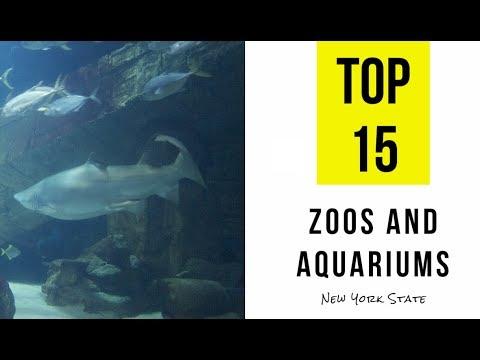 Best Zoo In New York Area Best Zoo 2017