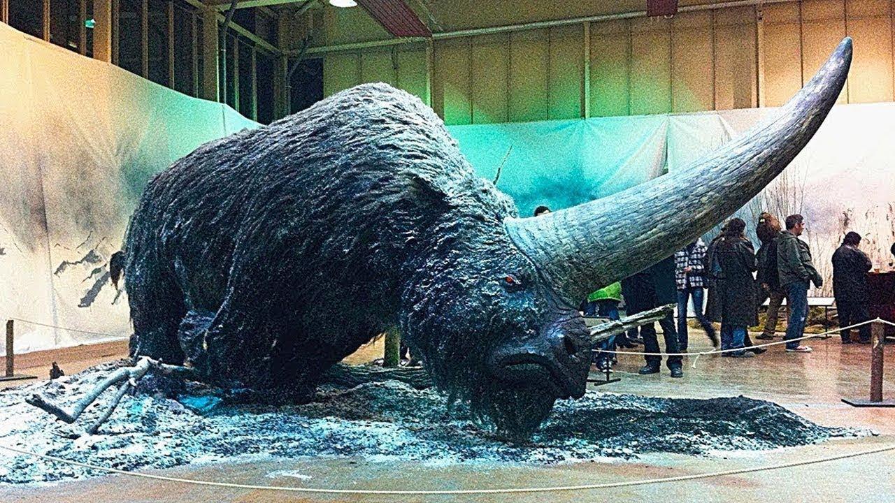 5 Невероятных Вымерших Животных!