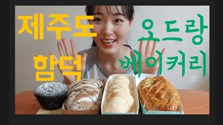 [제주도 유명 빵집 1탄] 오드랑 베이커리 제주 마농바…