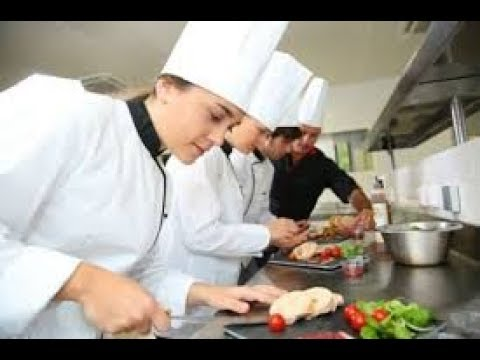 rapport-de-stage-cuisine