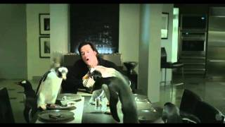 Mr Poppers Penguins 2011 Official Trailer