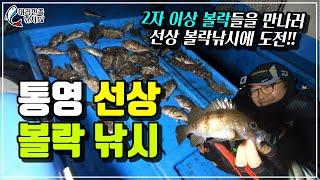 볼락낚시 통영 선상 루어낚시 대리만족 하세요~