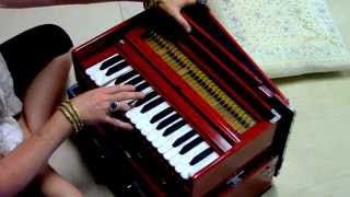 """Vande gurunam caranaravinde"", played on harmonium (SRYBC)"