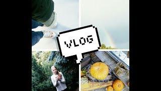 VLOG:очередная поездка,каток,зима,съемки заставки для канала с Майей,брей-ринг,чем я крашусь .