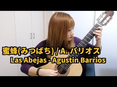 蜜蜂(みつばち) / A. バリオス Las Abejas - Agustin Barrios