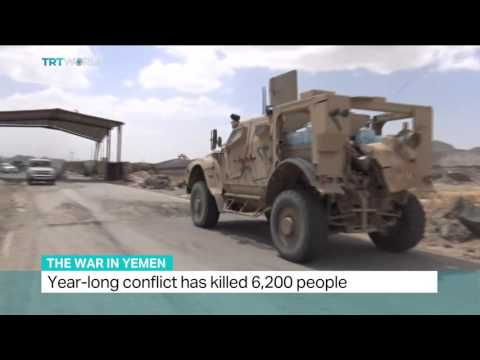 Interview with Adam Baron from European Council on Foreign Affairs about war in Yemen