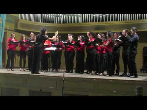 Dimitri Cervo - Ave Maria (for Mixed Choir) - Sacra Vox (Valéria Matos, Cond.)