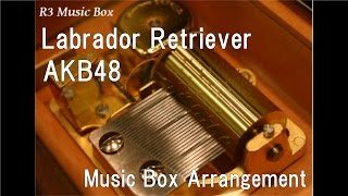 Labrador Retriever/akb48 [music Box]