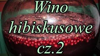 Wino hibiskusowe (Malwa Sudańska) - cz.2