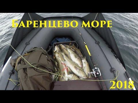 Весенний лов трески на Баренцевом море / Spring cod fishing in the Barents sea