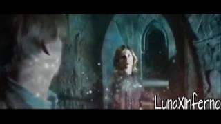 Path//Harry Potter