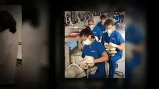 What jobs are apart of a dental hygienist job description? Thumbnail