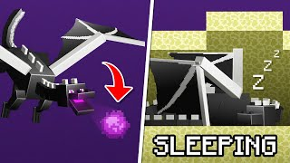 10 Ender Dragon Secrets You Didn't Know in Minecraft 1.16!