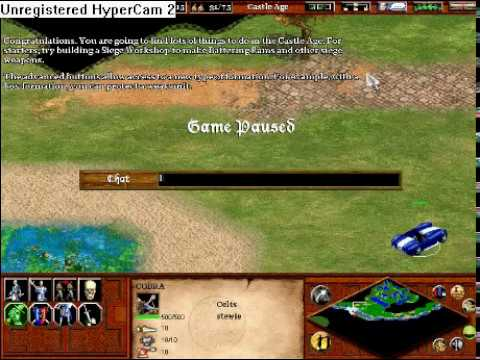 Cheat code game age empires 2 little fighter 2 games to play