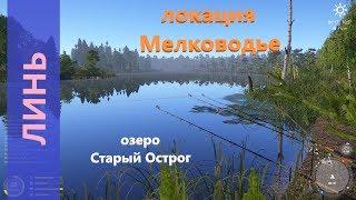 Русская рыбалка 4 озеро Старый Острог Линь за островком