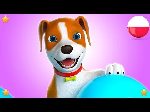 Bingo | Polskie Piosenki Dla Dzieci | Kołysanki | Filmy Dla Dzieci