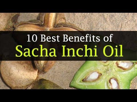 10 Amazing Sacha Inchi Oil Benefits