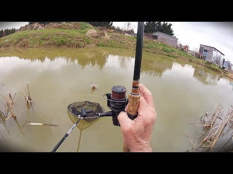 Winter Fishing With A Float And Maggots