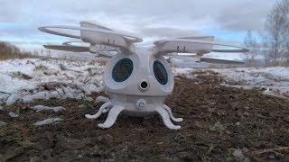 Квадрокоптер со странным внешним видом ... FLYPRO Sepia ... Полет по маршруту, зависание в точке