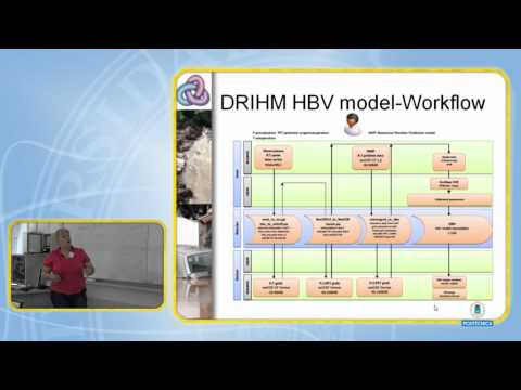 Hydrological model theory HBV. DRIHM 11/17