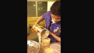 Plexus Chocolate Peanut Butter No Bake Energy Balls
