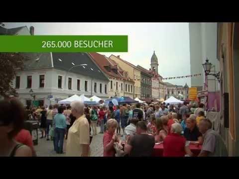 Tag der Sachsen 2014 in Großenhain - Impressionen