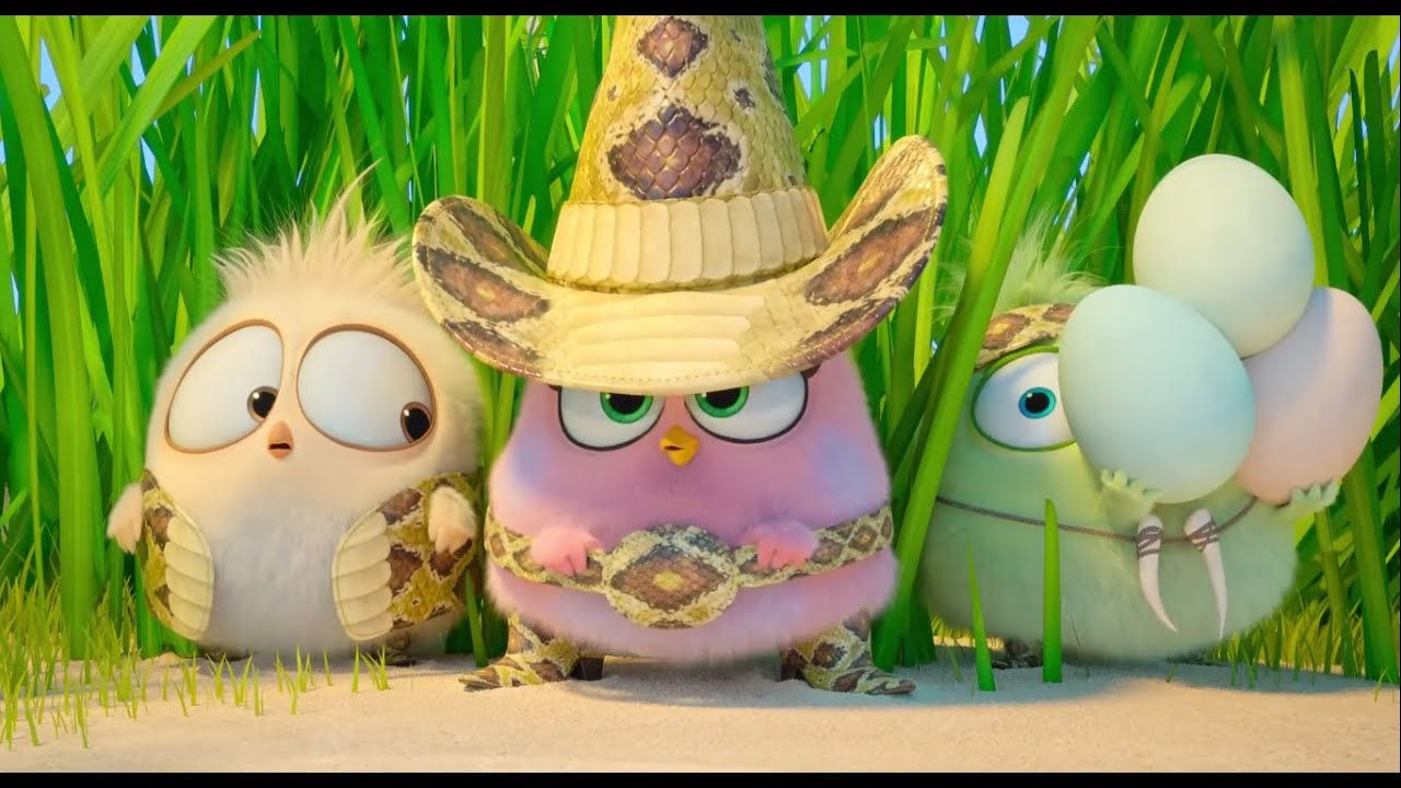 Download Angry birds and their little sister eggs || Angry birds 2 movie ||