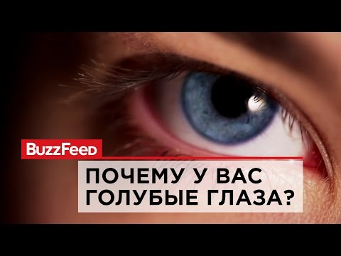 Почему у вас голубые глаза?