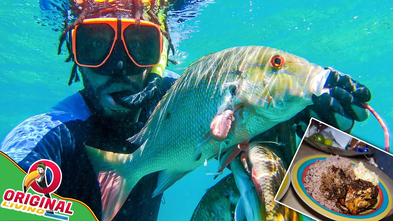 Spearfishing: Brown Stew Snapper Fish For Sunday Dinner | Catch And Cook Jamaican Style